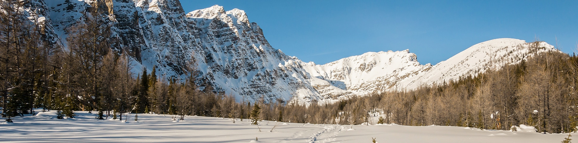 Best snowshoeing trails in Banff National Park