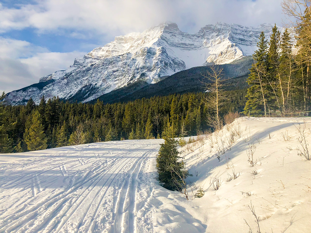 Beautiful views on Cascade Valley XC ski trail in Lake Louise, Banff National Park