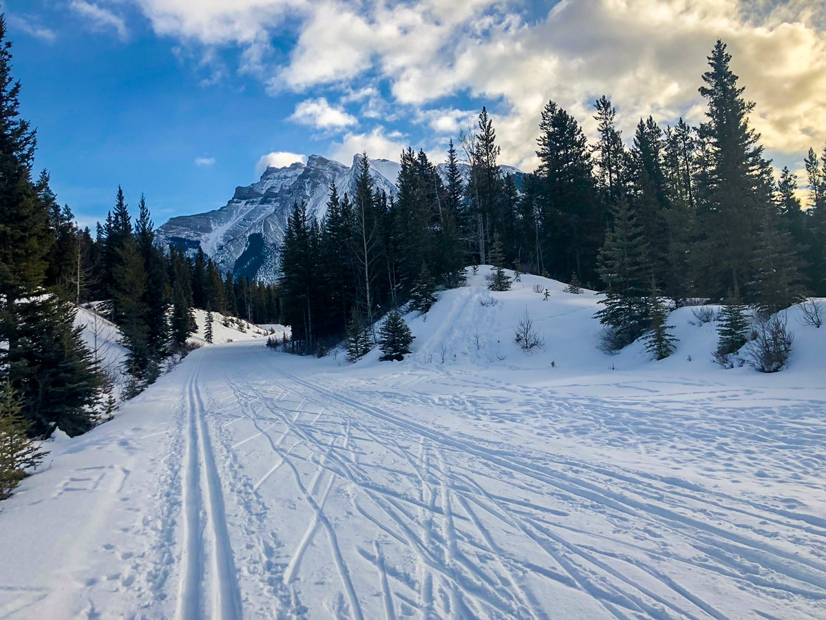 Beautiful day on Cascade Valley XC ski trail in Lake Louise, Banff National Park