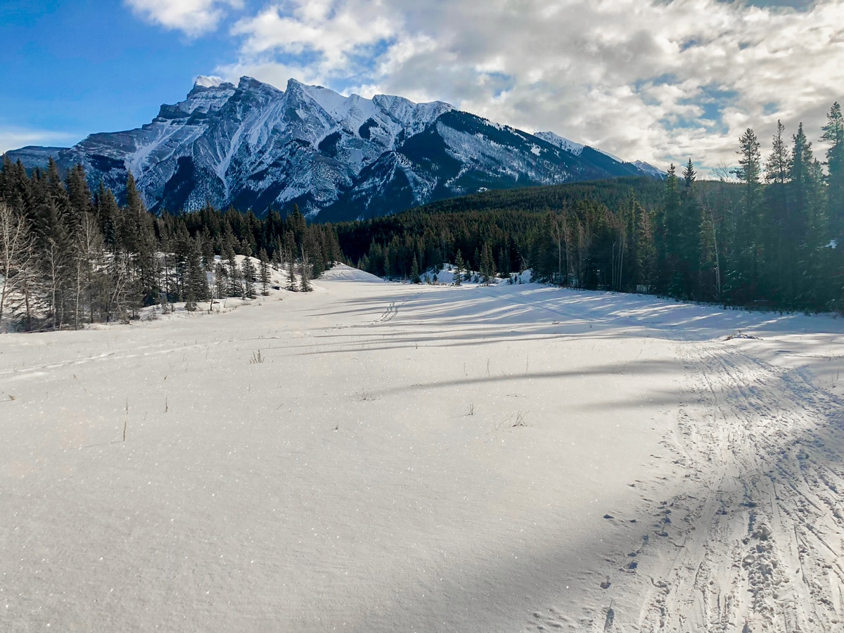 Great views on Cascade Valley XC ski trail in Lake Louise, Banff National Park