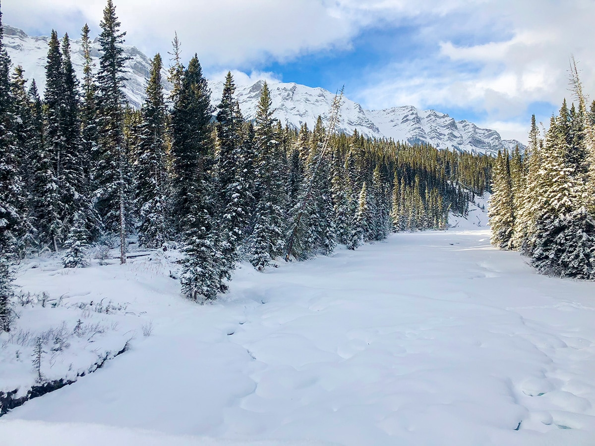Frozen river on Cascade Valley XC ski trail in Lake Louise, Banff National Park