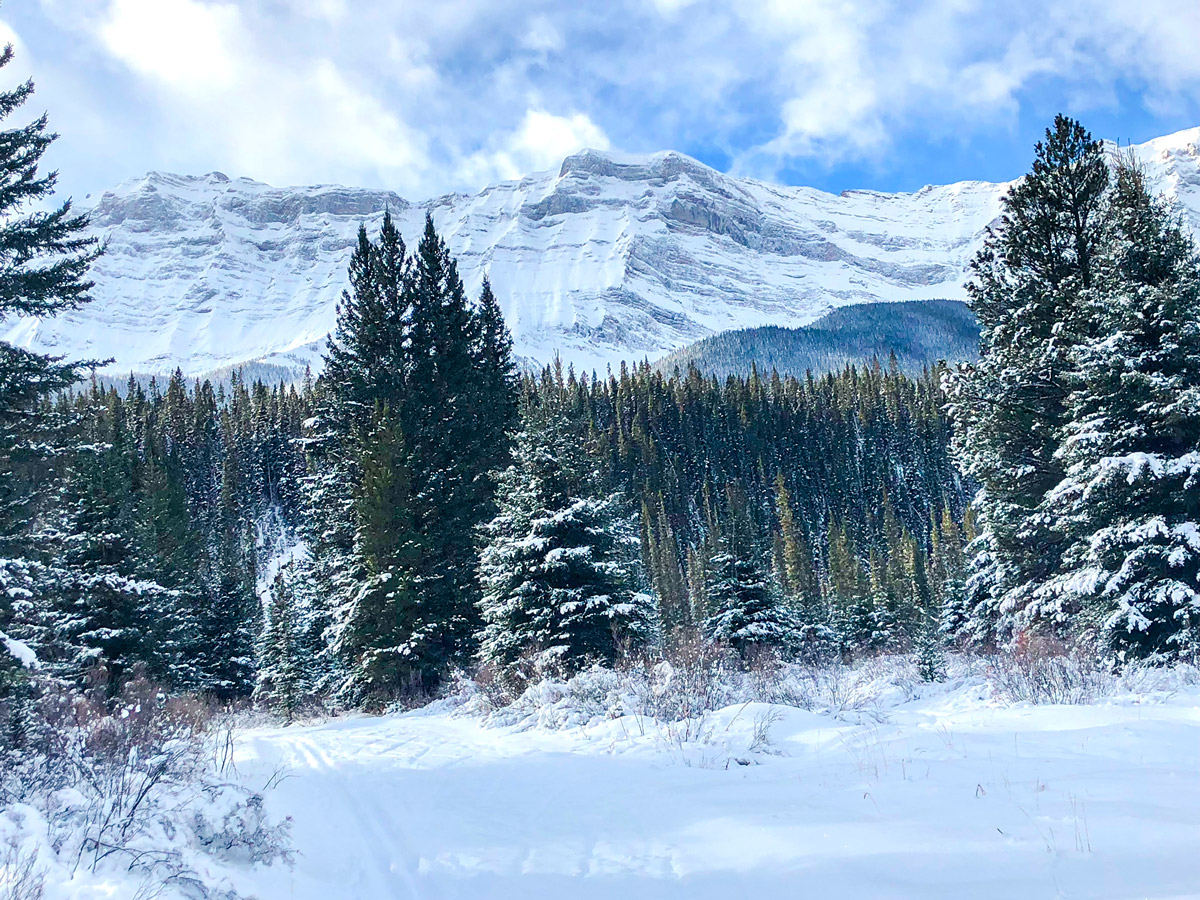 Crossing the bridge on Cascade Valley XC ski trail in Lake Louise, Banff National Park