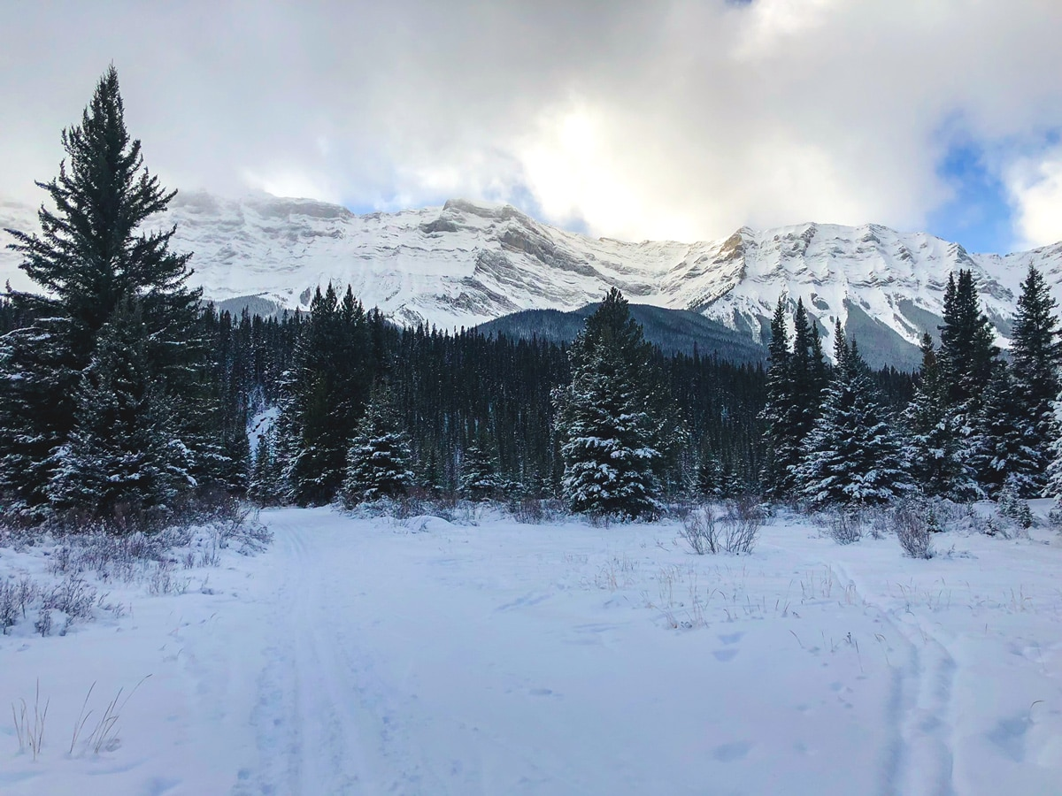 Scenery of Cascade Valley XC ski trail in Lake Louise, Banff National Park