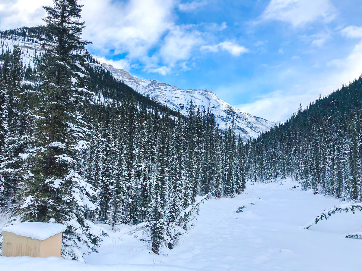 Stunning panorama on Cascade Valley XC ski trail in Lake Louise, Banff National Park