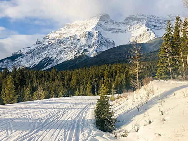 Scenery of Cascade Valley XC ski trail in Banff National Park, Alberta