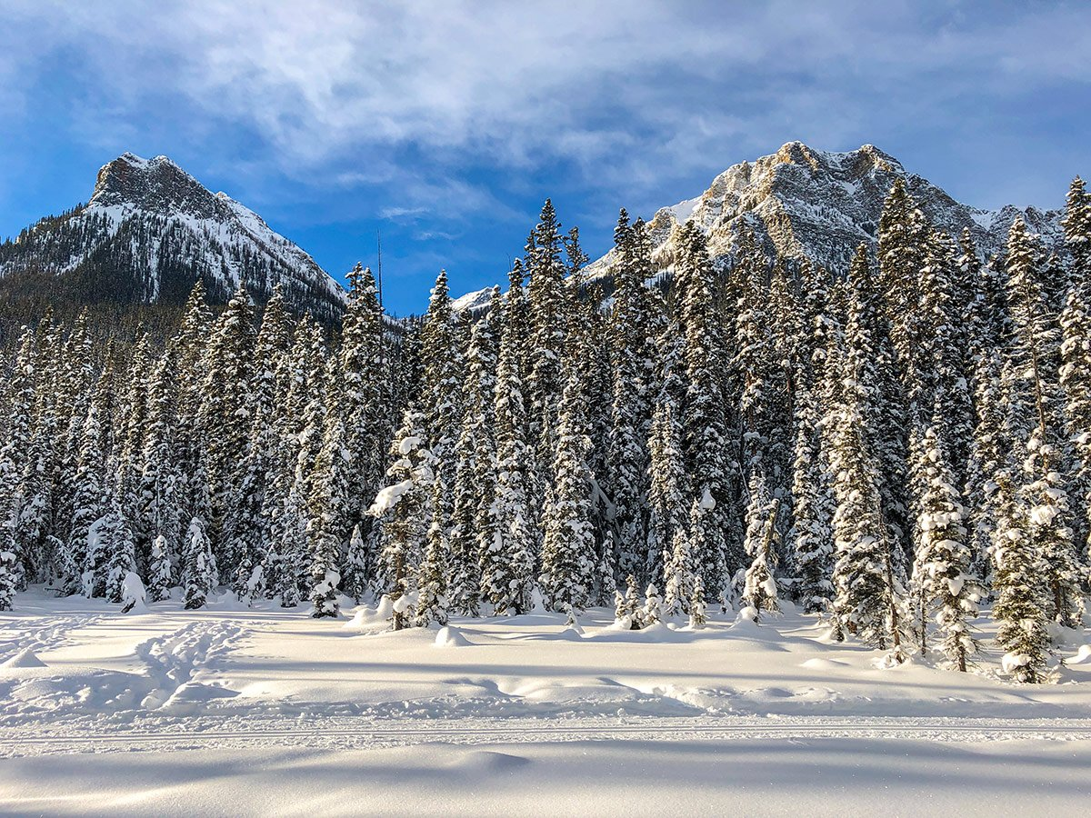 Fairview and Saddleback on Fairview Loop XC ski trail in Lake Louise, Banff National Park