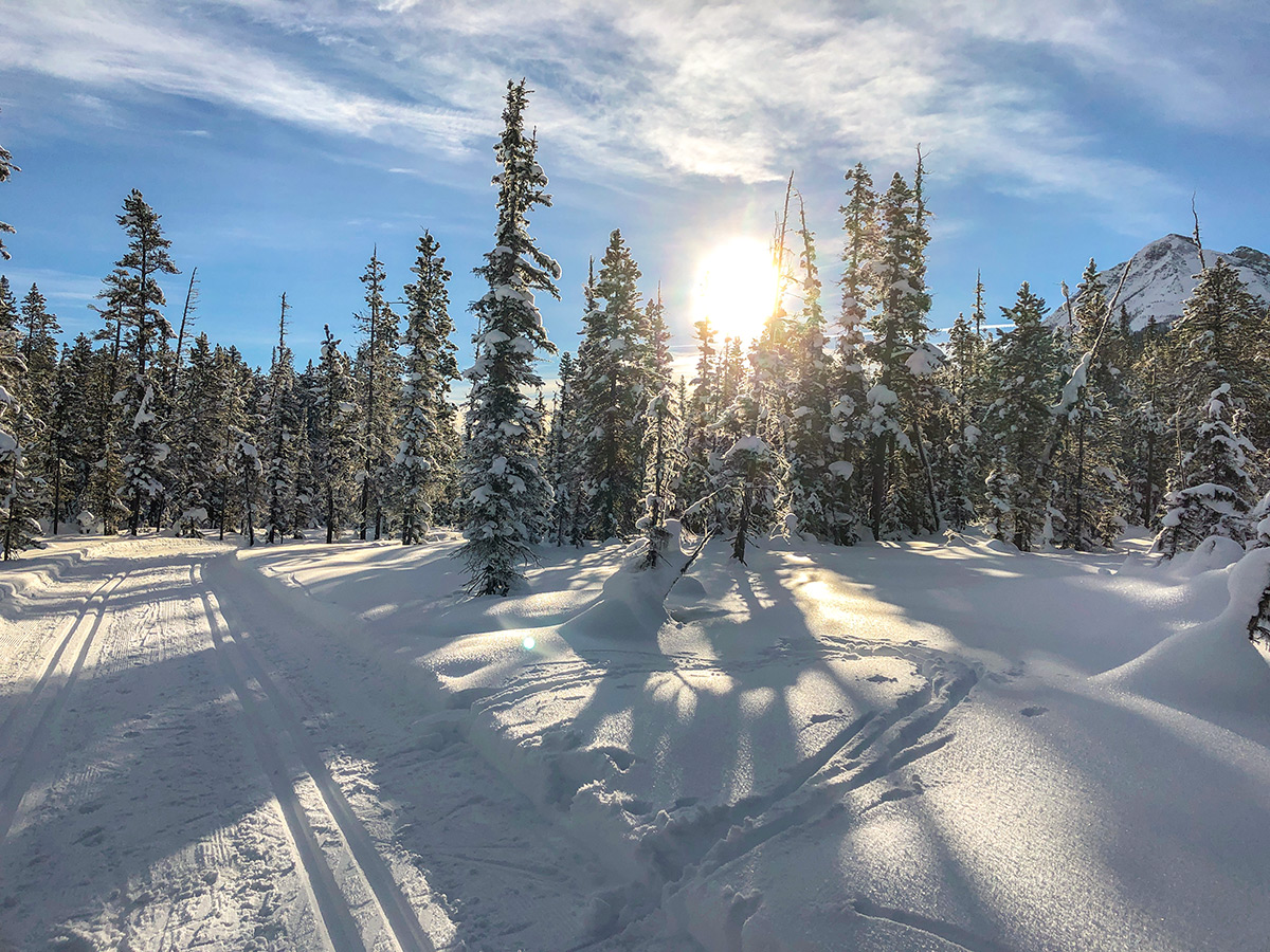 Great path of Fairview Loop XC ski trail in Lake Louise, Banff National Park