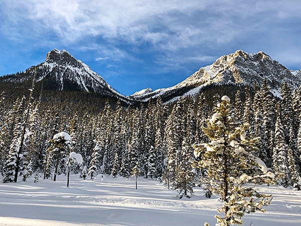 Scenery of Fairview Loop XC ski trail in Banff National Park, Alberta