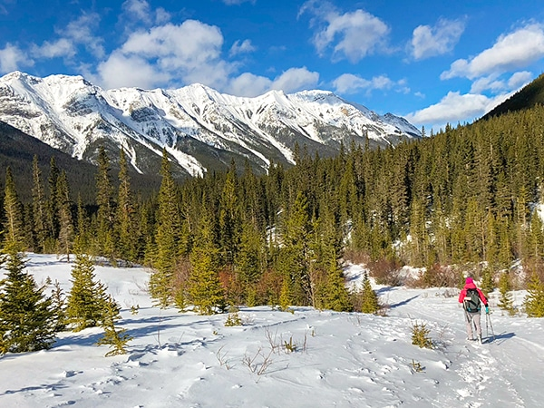 Scenery of Goat Creek to Banff Springs XC ski trail in Banff National Park, Alberta