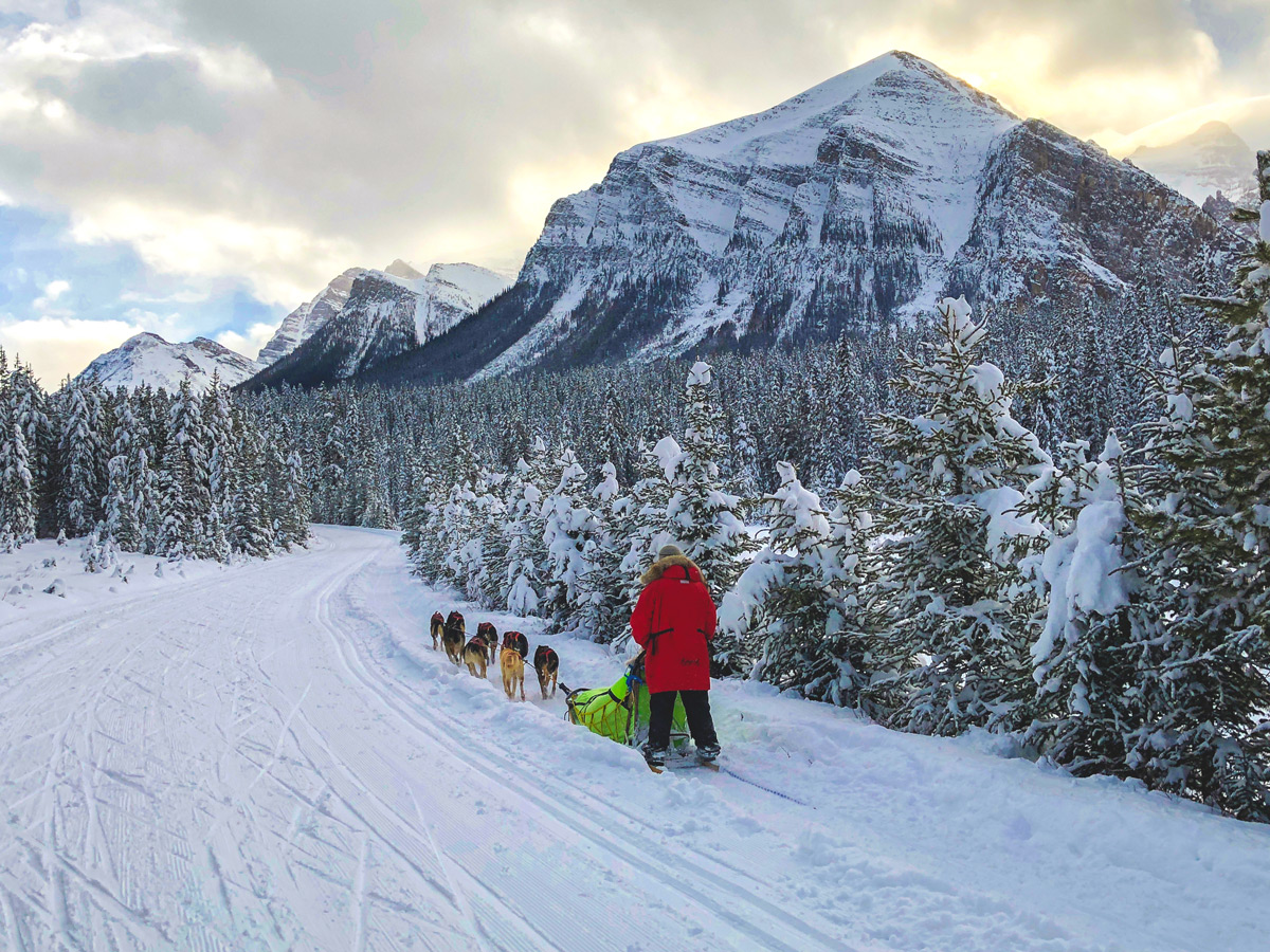 Beautiful views on Great Divide 1A XC ski trail in Lake Louise, Banff National Park