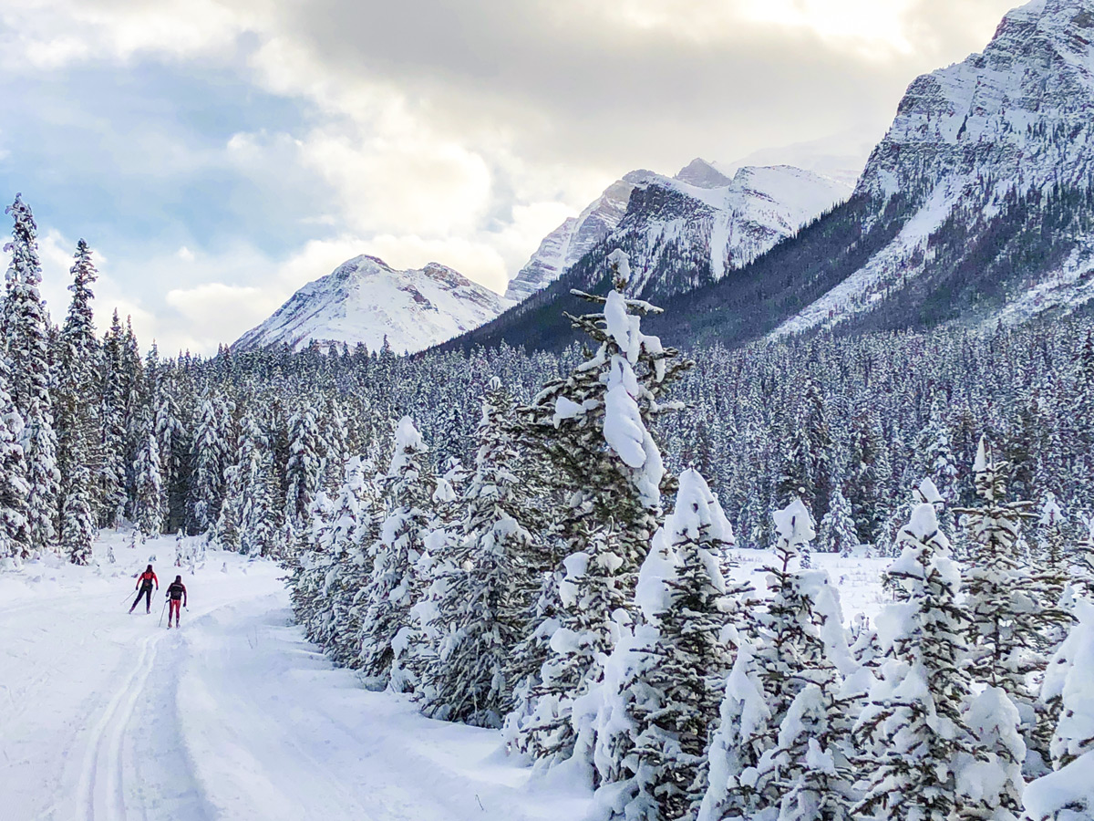 Stunning views on Great Divide 1A XC ski trail in Lake Louise, Banff National Park