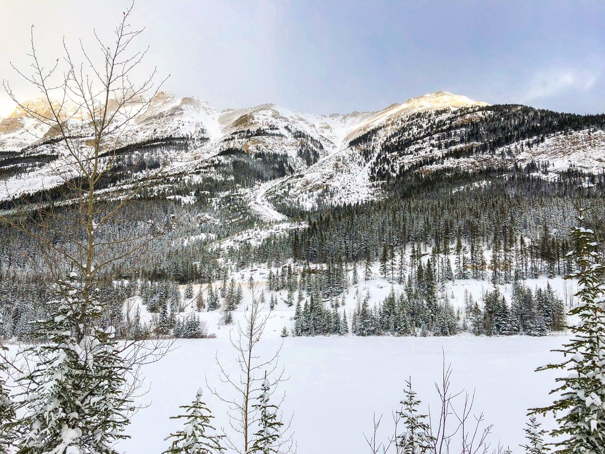 Wonderful views on Great Divide 1A XC ski trail in Lake Louise, Banff National Park