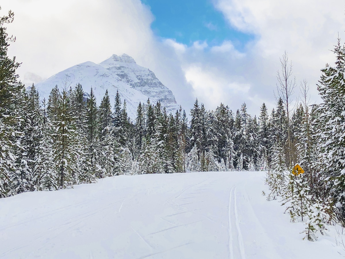 Scenery on Great Divide 1A XC ski trail in Lake Louise, Banff National Park