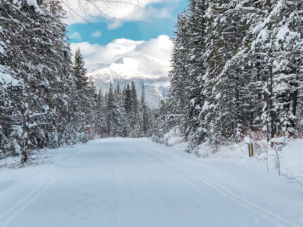Mountain scenery on Great Divide 1A XC ski trail in Lake Louise, Banff National Park