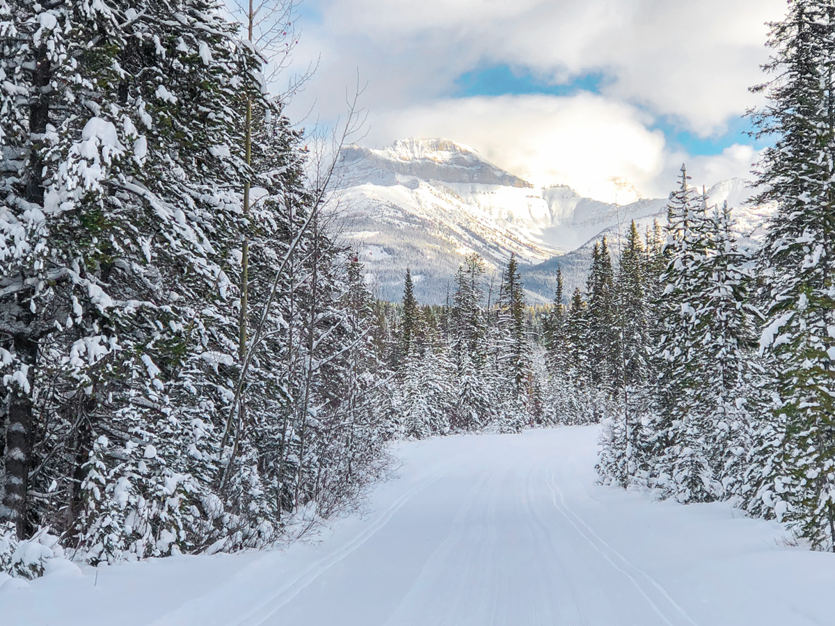 Wonderful panorama on Great Divide 1A XC ski trail in Lake Louise, Banff National Park