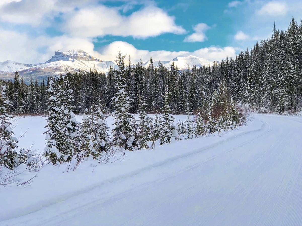 Great winter views on Great Divide 1A XC ski trail in Lake Louise, Banff National Park