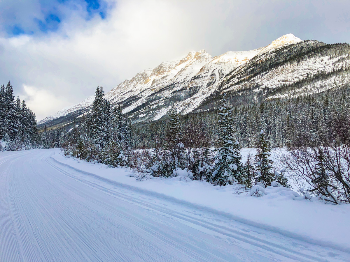 Views west on Great Divide 1A XC ski trail in Lake Louise, Banff National Park