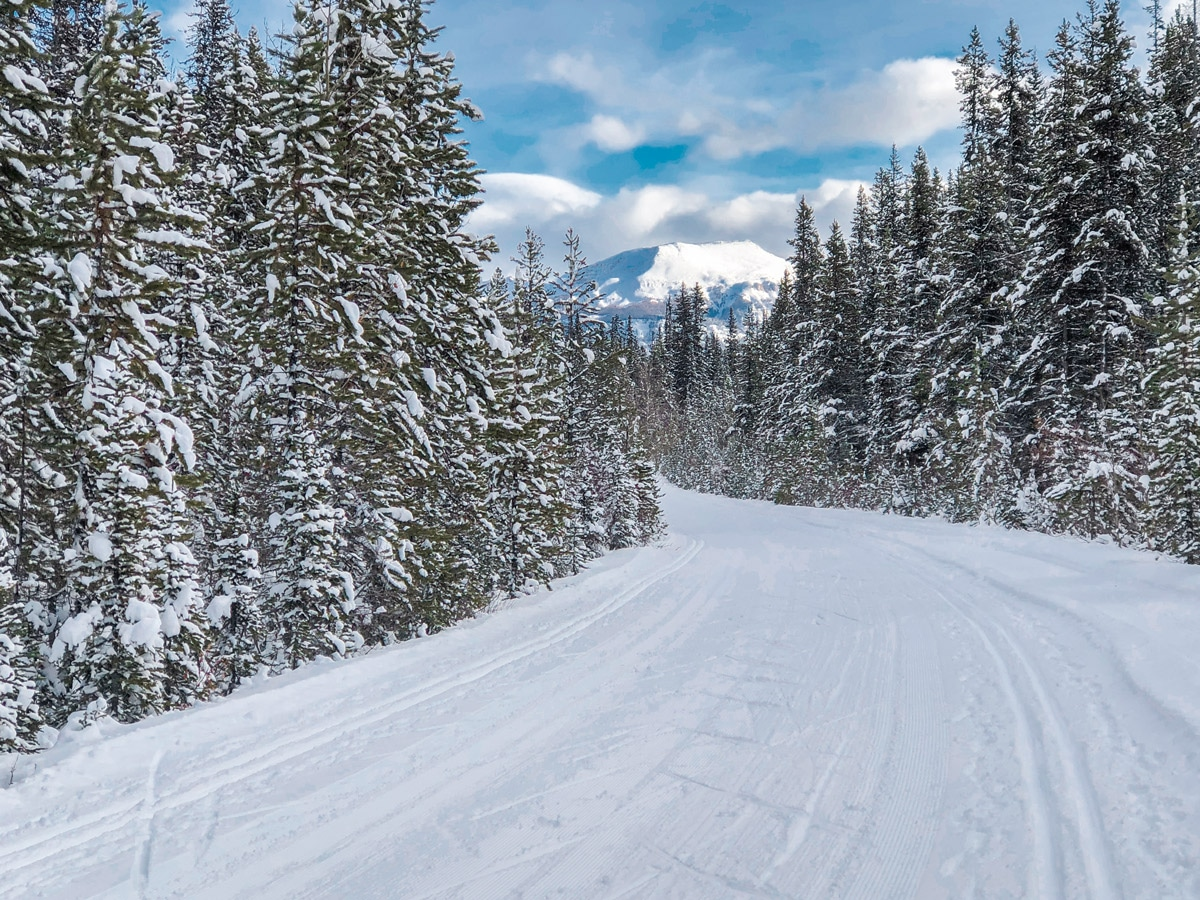Approaching Lake Louise on Great Divide 1A XC ski trail in Lake Louise, Banff National Park
