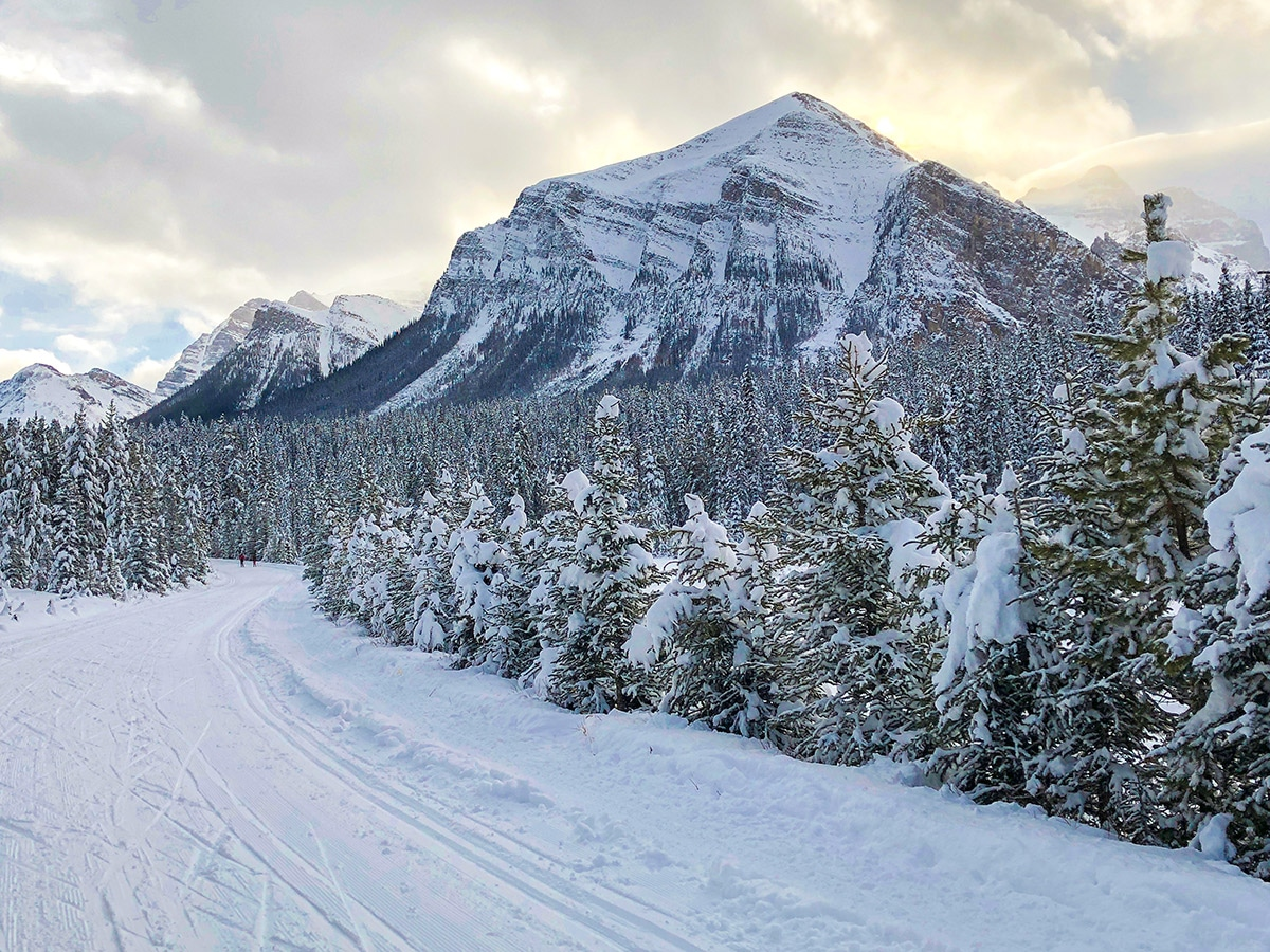 Mount Fairview on Great Divide 1A XC ski trail in Lake Louise, Banff National Park