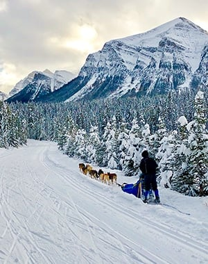 Great Divide 1A XC ski trail in Banff National Park, Alberta