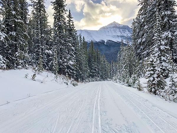 Scenery of Great Divide 1A XC ski trail in Banff National Park, Alberta