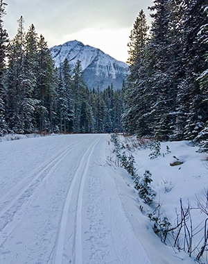 Moraine Lake Road XC ski trail in Banff National Park, Alberta
