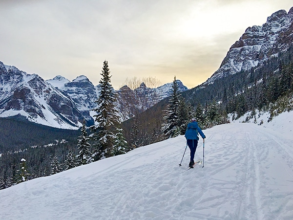 Scenery of Moraine Lake Road XC ski trail in Banff National Park, Alberta