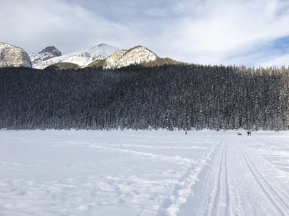 St Piran and Beehive on Lake Louise Lakeshore XC ski trail in Banff National Park