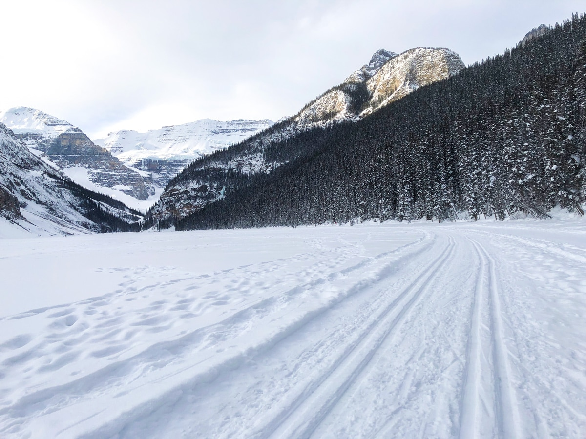 Winter on Lake Louise Lakeshore XC ski trail in Banff National Park