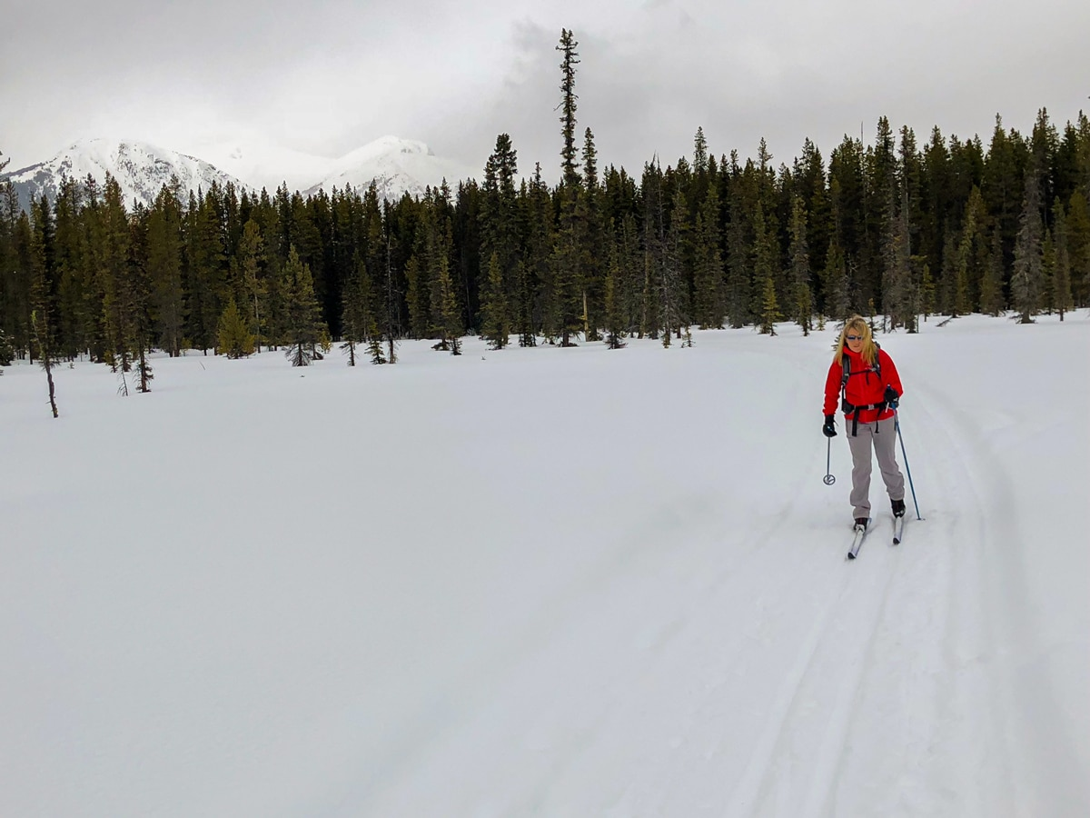 Pipestone Loop XC ski trail in Lake Louise is surrounded by beautiful snowy mountains