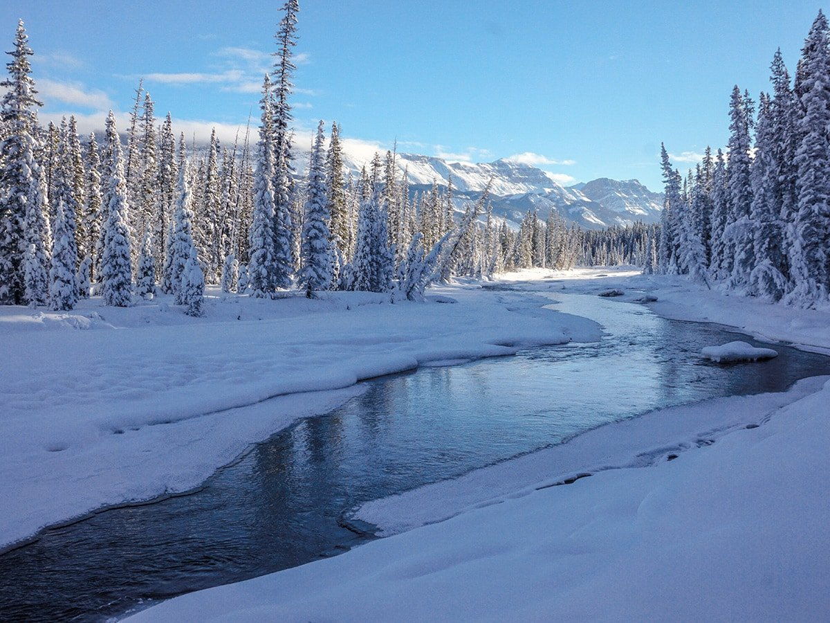 Pretty panorama on Chateau to Village on Tramline and Bow River XC ski trail in Lake Louise, Banff National Park