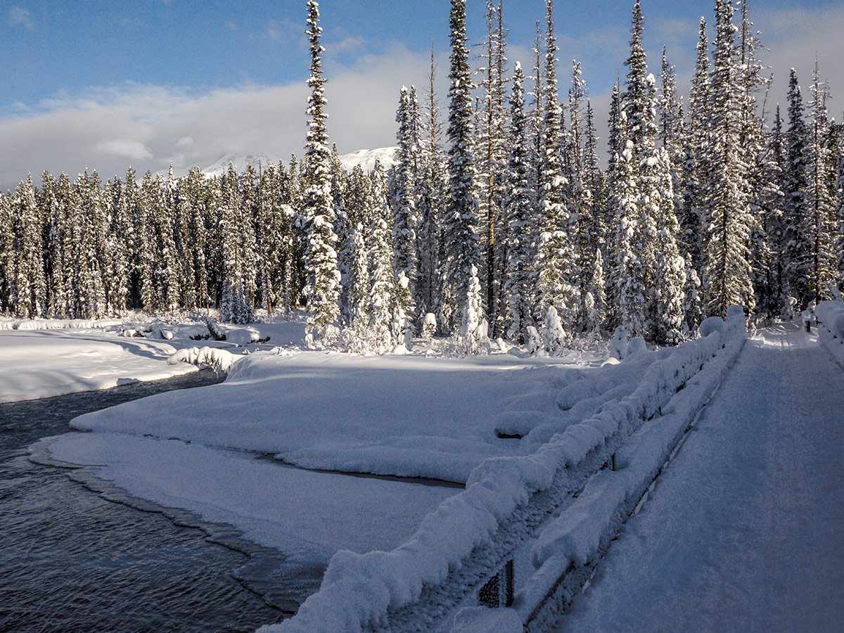 Crossing the river on Chateau to Village on Tramline and Bow River XC ski trail in Lake Louise, Banff National Park