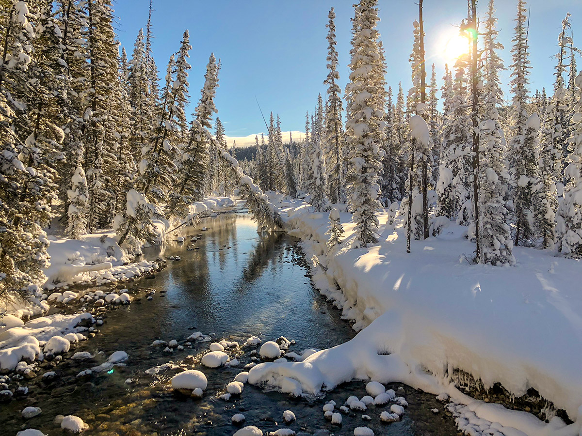Winter views on Chateau to Village on Tramline and Bow River XC ski trail in Lake Louise, Banff National Park