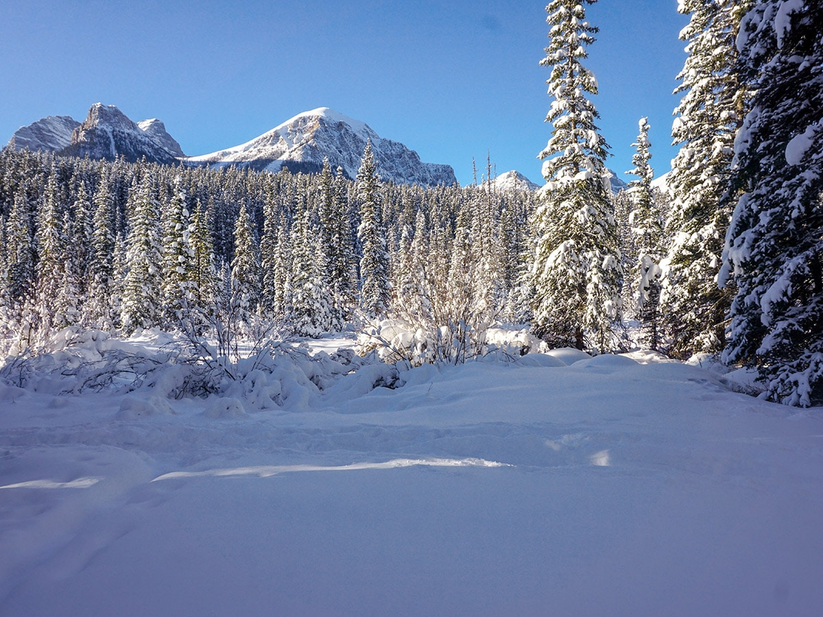 Looking upon Chateau to Village on Tramline and Bow River XC ski trail in Lake Louise, Banff National Park
