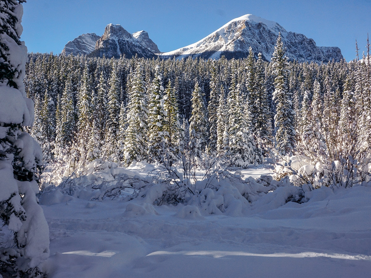 Mount Fairview on Chateau to Village on Tramline and Bow River XC ski trail in Lake Louise, Banff National Park