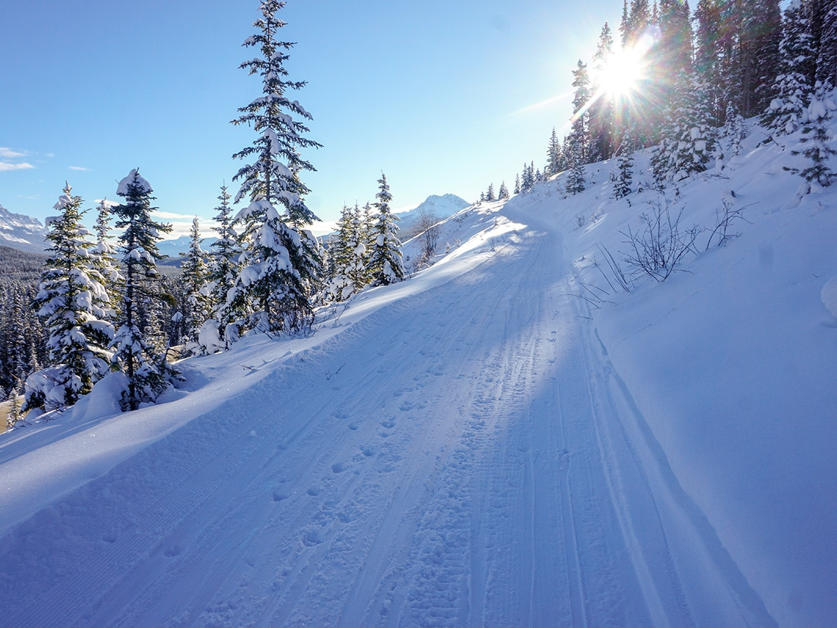 Great scenery on Chateau to Village on Tramline and Bow River XC ski trail in Lake Louise, Banff National Park