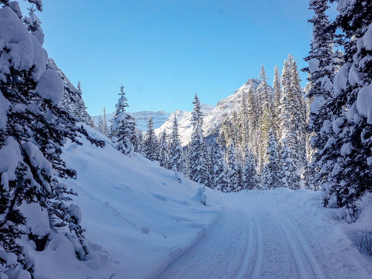 Amazing views on Chateau to Village on Tramline and Bow River XC ski trail in Lake Louise, Banff National Park