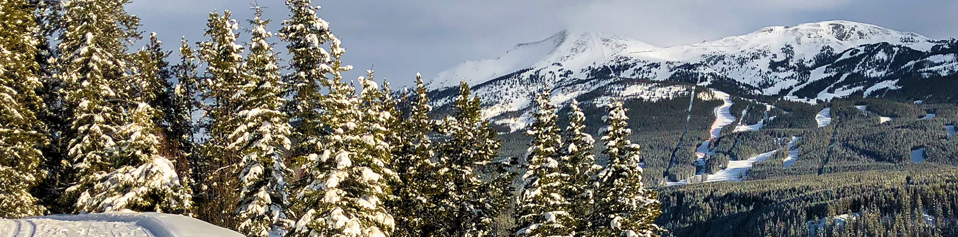 Panorama of Chateau to Village on Tramline and Bow River XC ski trail in Banff National Park, Alberta