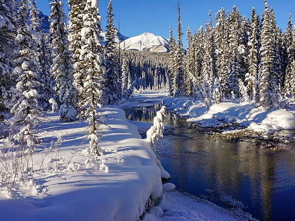 Scenery of Chateau to Village on Tramline and Bow River XC ski trail in Banff National Park, Alberta