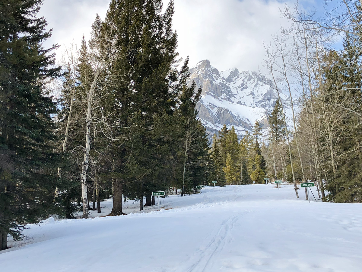 Skiing for beginners on Tunnel Mountain XC ski trail in Banff, Alberta