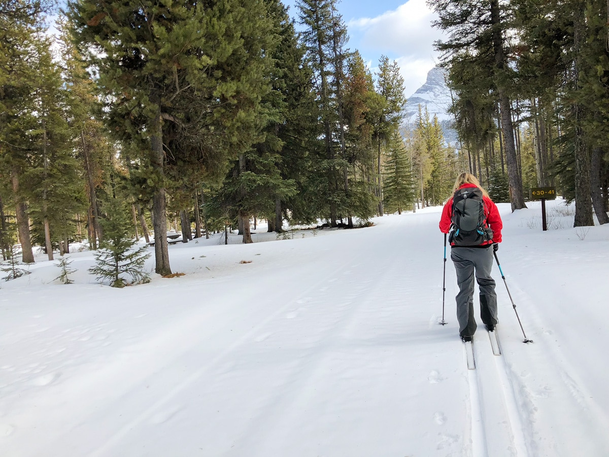 Skiing around the campground on Tunnel Mountain XC ski trail in Banff, Alberta