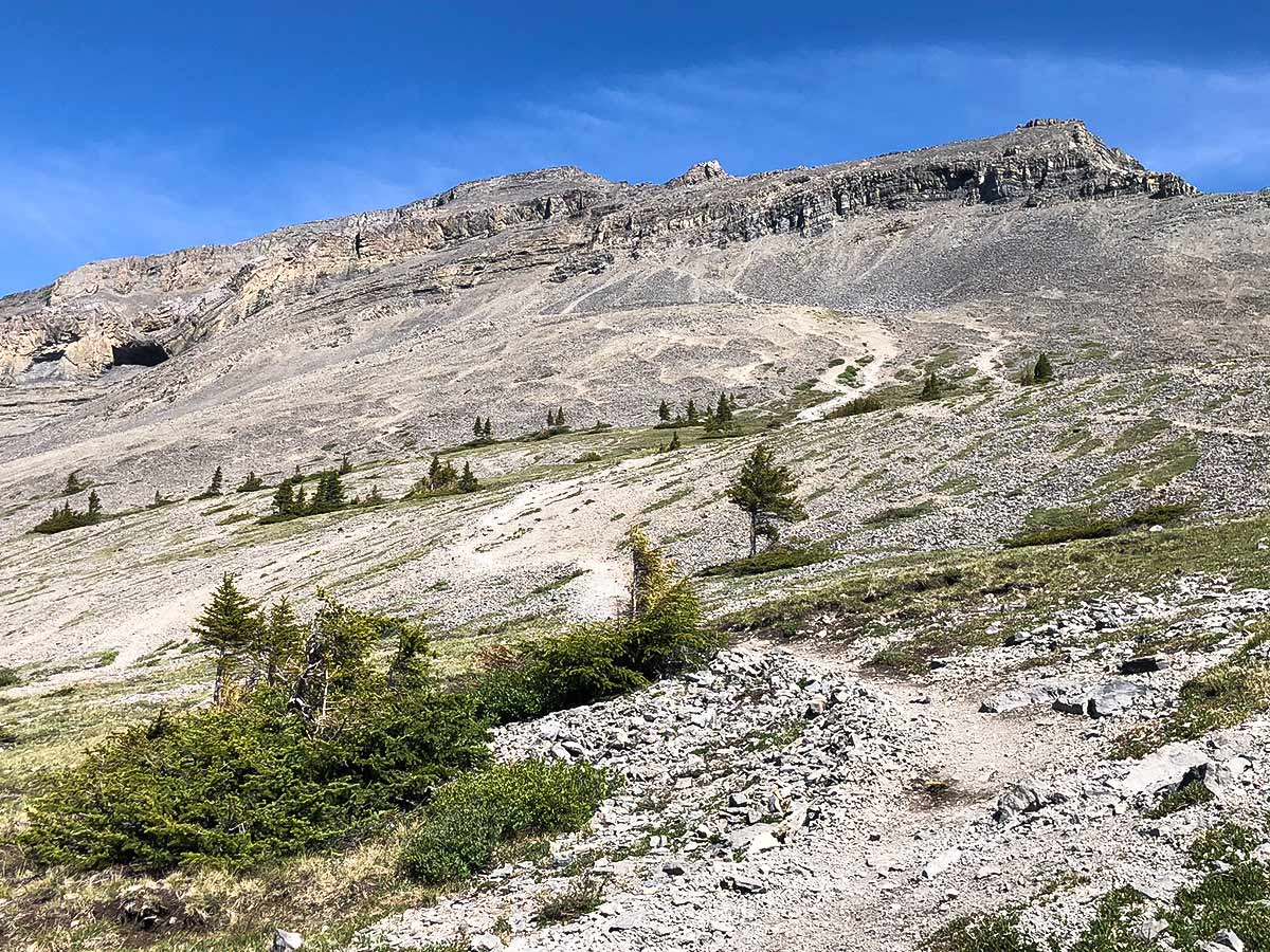 Scree path of East End of Rundle Route (EEOR) scramble in Canmore, Alberta