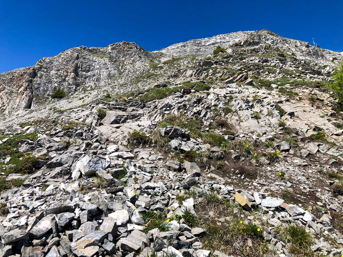 Scrambly path of Mount Indefatigable - South Peak scramble in Kananaskis near Canmore, the Canadian Rockies