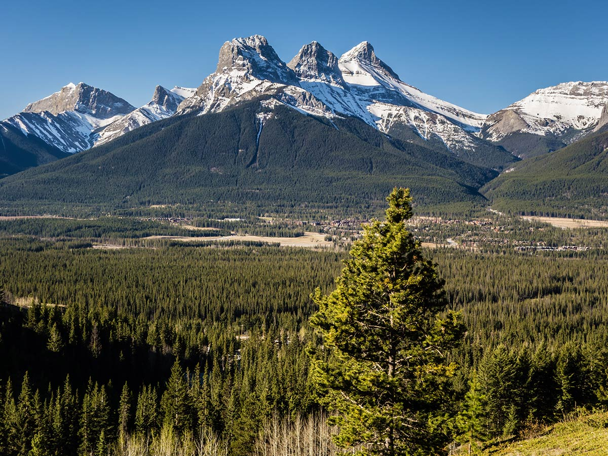 View of Three Sisters on Grotto Mountain scramble in Canmore, the Canadian Rockies