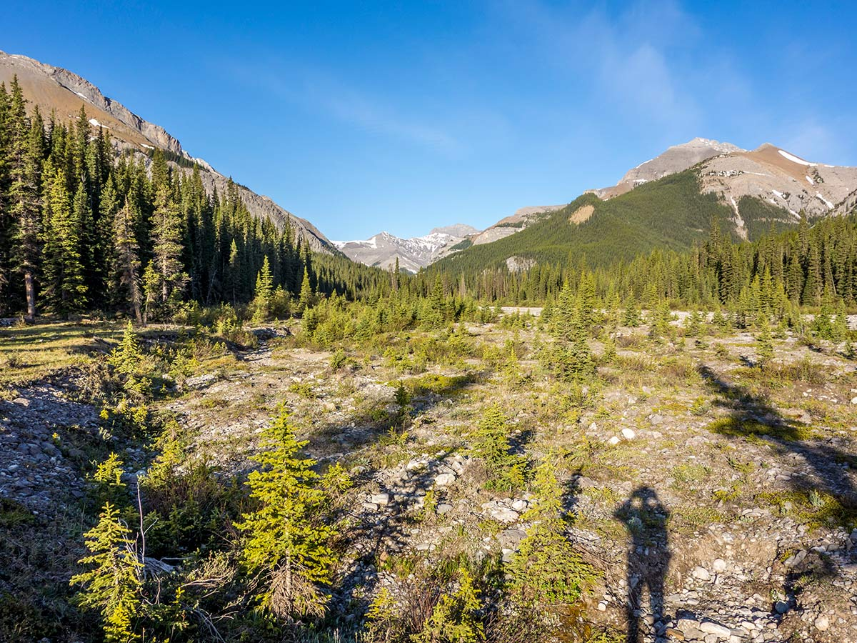 Trail of Mount Howard scramble in Kananaskis near Canmore, the Canadian Rockies