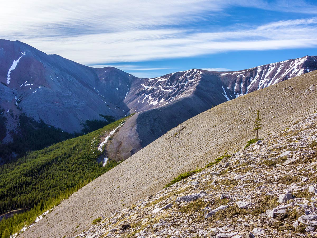 Slope on Mount Howard scramble in Kananaskis near Canmore, the Canadian Rockies