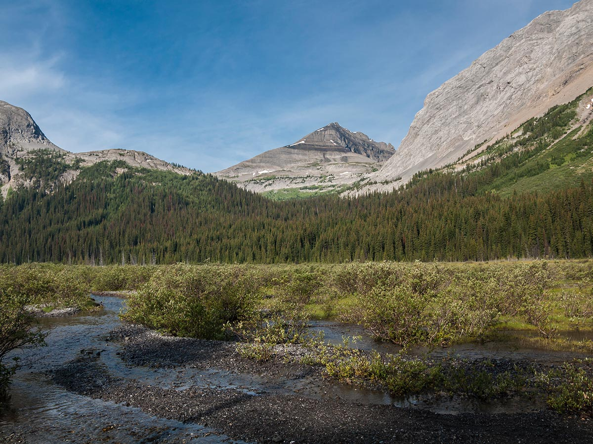 Views from Snow Peak scramble in Kananaskis near Canmore, the Canadian Rockies