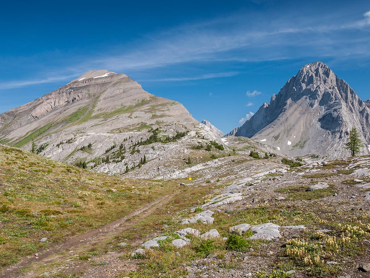 View from Burstall Pass on Snow Peak scramble in Kananaskis near Canmore, the Canadian Rockies