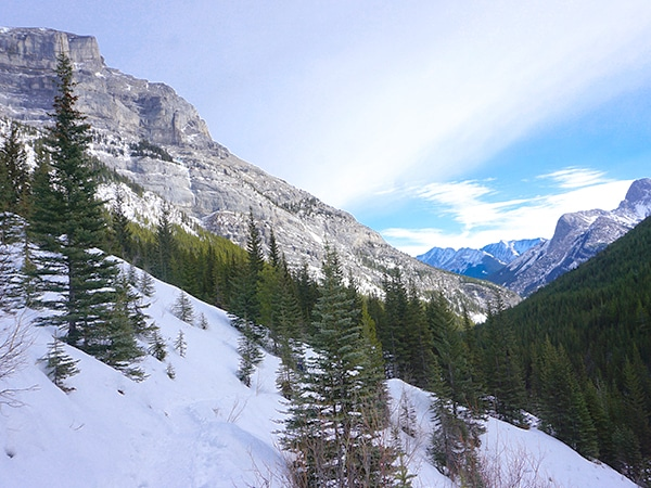Scenery of Lillian Lake snowshoeing trail in Kananaskis near Canmore