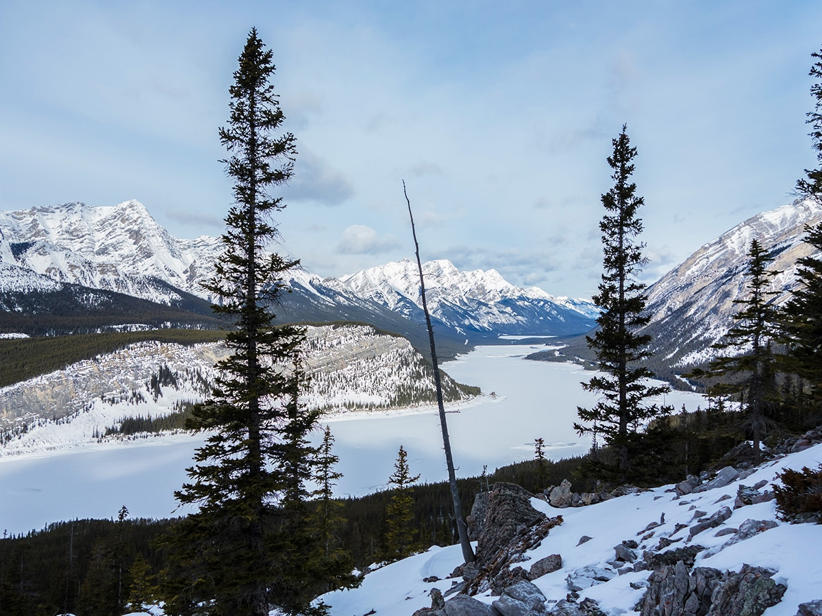 View northwest on Little Lougheed snowshoe trail in Kananaskis near Canmore